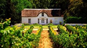Wein Südafika Stellenbosch